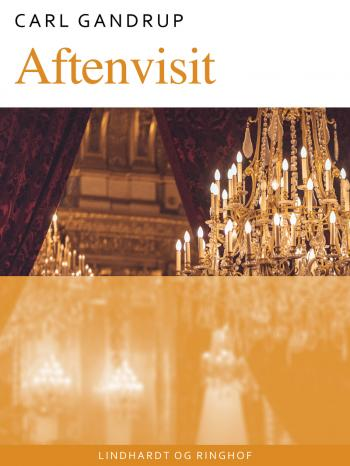 Aftenvisit