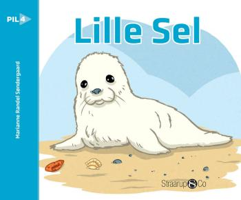 Lille Sel